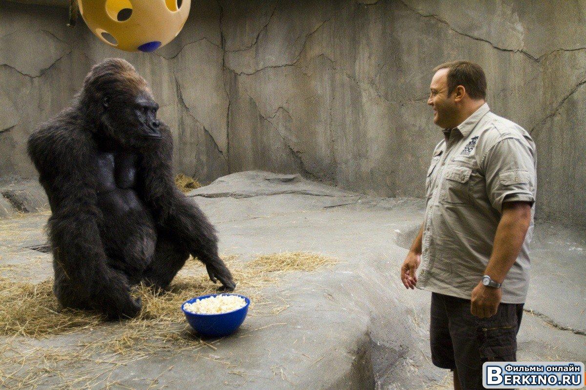 смотреть парень из зоопарка онлайн: