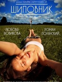 Шиповник (2011) смотреть онлайн